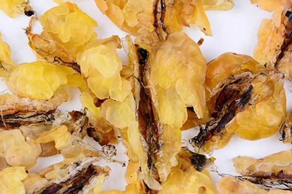 雪蛤可以在常温下保存吗