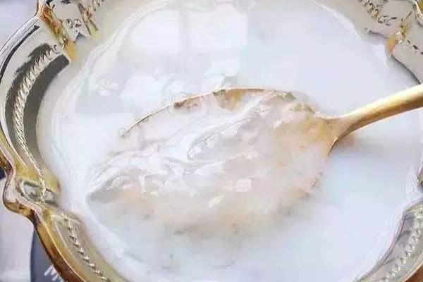 雪蛤燕窝牛奶的做法