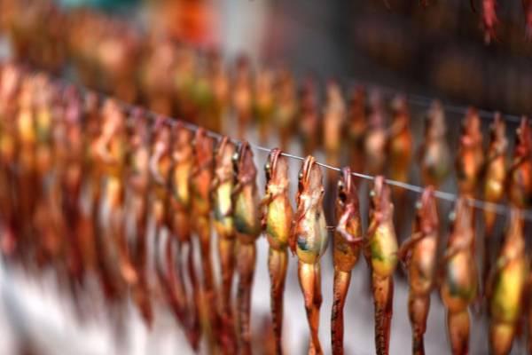 雪蛤油保质期多长时间,过期了还能吃吗