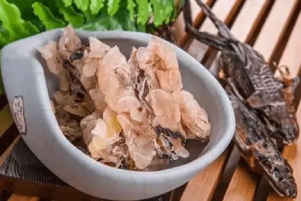 雪蛤膏和雪蛤的区别是什么