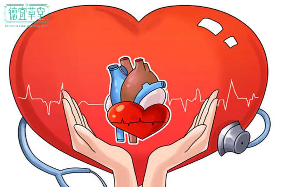 吃燕窝对心脏有什么作用?